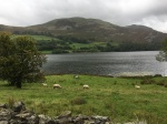Loweswater - South side